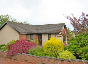 Thumbnail 3 bedroom bungalow to rent in 38 Inchkeith Avenue, Broughty Ferry, Dundee