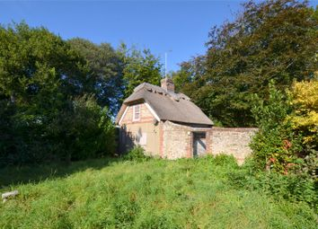 Thumbnail 2 bedroom cottage for sale in College Lane, Chichester, West Sussex
