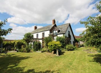 Thumbnail 4 bedroom detached house for sale in Higher Coombses, Chard