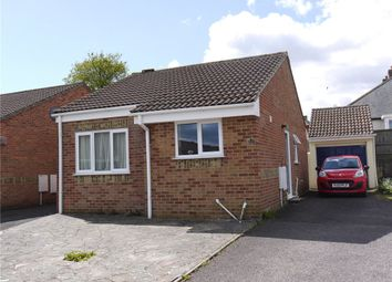 Thumbnail 2 bed bungalow to rent in Salway Gardens, Axminster, Devon