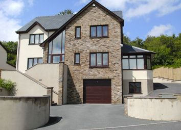 Thumbnail 4 bed detached house for sale in Forest Road, Lampeter
