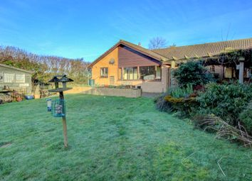 Thumbnail 3 bed bungalow for sale in Mount View, Christon Bank, Alnwick
