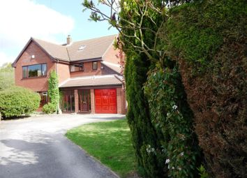 Thumbnail 4 bed detached house to rent in Willow Close, Lingwood, Norwich