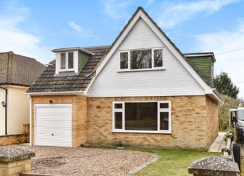 Thumbnail 4 bed detached bungalow to rent in Birch Lane, West End