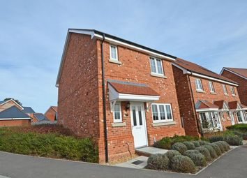 Thumbnail 3 bed detached house for sale in Lily Road, Four Marks, Alton, Hampshire
