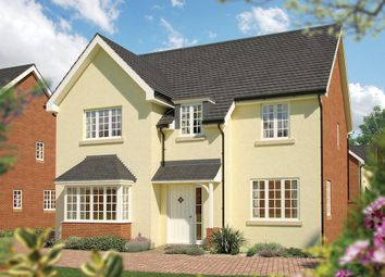 "Thumbnail 5 bedroom property for sale in ""The Birch"" at Pixie Walk, Ottery St. Mary"