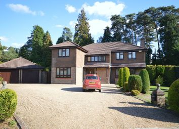 Thumbnail 4 bed detached house to rent in Hillgarth, Hindhead