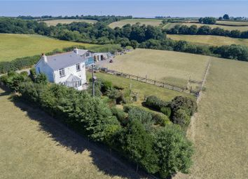 Thumbnail 3 bed detached house for sale in Burrington, Umberleigh