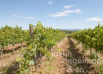 Thumbnail Farm for sale in Italy, Tuscany, Siena, Montepulciano.