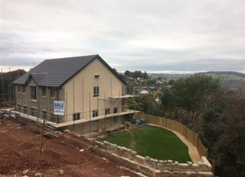 Thumbnail 4 bedroom detached house for sale in Joys Green Road, Lydbrook, Gloucestershire