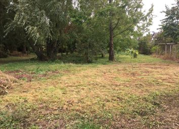 Thumbnail Property for sale in Banningham, Norwich, Norfolk