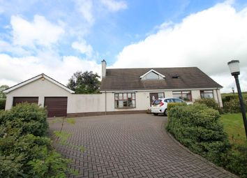 Thumbnail 4 bed detached house for sale in Pond Park Road, Lisburn