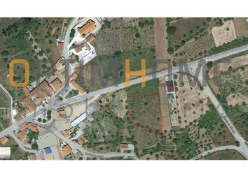 Thumbnail Land for sale in Serrado De Martinchel, Martinchel, Abrantes