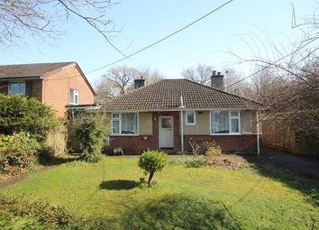 Thumbnail 3 bed detached bungalow for sale in New Milton, Hampshire