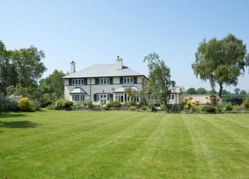 Thumbnail 5 bedroom detached house for sale in Kersbrook, Budleigh Salterton, Devon