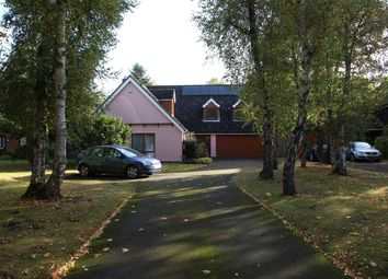 Thumbnail 6 bed detached house for sale in Forest Lane, Martlesham Heath, Ipswich