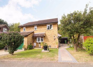 Thumbnail 4 bed detached house for sale in Celandine Drive, St. Leonards-On-Sea, East Sussex
