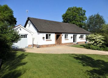Thumbnail 3 bed detached bungalow for sale in Ty Ni, Llanpumsaint, Carmarthen