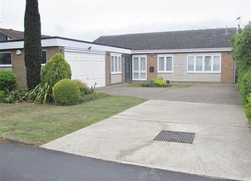 Thumbnail 3 bed bungalow for sale in Henley Road, Ipswich