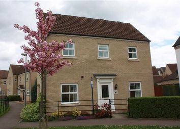 Thumbnail 3 bed semi-detached house to rent in The Glades, Huntingdon