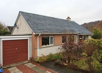 Thumbnail 3 bed detached bungalow to rent in Montrose Avenue, Crieff