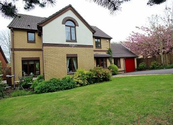 Thumbnail 4 bed detached house for sale in Hollyhock Drive, Brackla, Bridgend, Bridgend.