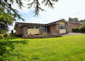Thumbnail 4 bedroom detached bungalow for sale in Yew Tree Lane, Compton Martin, Bristol