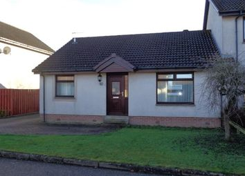 Thumbnail 3 bed semi-detached bungalow to rent in Alder Drive, Portlethen, Aberdeenshire
