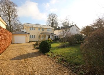 Thumbnail 4 bed detached house for sale in Burcot Park, Burcot, Abingdon