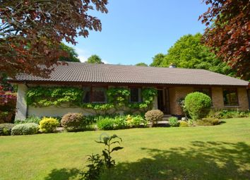 Thumbnail 4 bed detached bungalow for sale in 2 Kinsteary West, Lethen Road, Auldearn, Highland