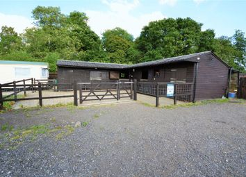 Thumbnail Equestrian property for sale in Hambledon Road, Denmead, Waterlooville