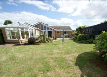 Thumbnail 3 bed detached bungalow for sale in Hookhills Gardens, Paignton
