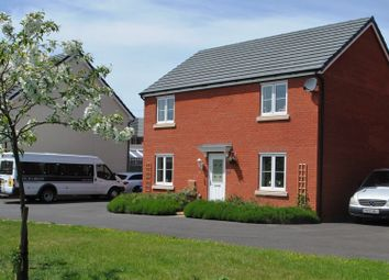 Thumbnail 4 bed detached house for sale in Rosa Way, Wilstock Village