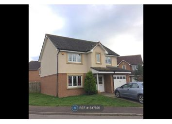 Thumbnail 4 bed detached house to rent in Caulstran Road, Dumfries