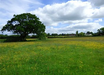 Thumbnail Land for sale in The Causeway, Hazelbury Bryan, Sturminster Newton, Dorset