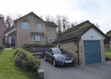 Thumbnail 4 bed detached house for sale in Celandine Drive, St Leonards-On-Sea, East Sussex