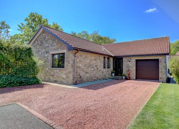 Thumbnail 3 bed detached bungalow for sale in Chesterwell, Swarland, Morpeth