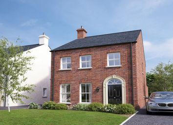 Thumbnail 3 bed detached house for sale in ), Belfast Road, Muckamore, Antrim