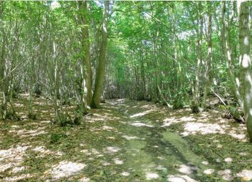 Land for sale in Plot 26C, Womble Wood, Stodham Lane, Liss Hampshire GU33