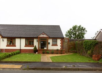 Thumbnail 2 bed semi-detached bungalow for sale in Bolahaul Road, Cwmffrwd, Carmarthen, Carmarthenshire.