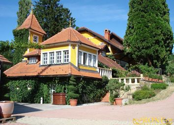 Thumbnail Hotel/guest house for sale in Ppp1803, Ormož, Slovenia