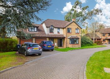 Thumbnail 4 bed detached house to rent in Martinsyde, Woking, Surrey