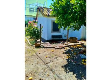 Thumbnail 2 bed semi-detached house for sale in Castelo Branco, Castelo Branco, Castelo Branco