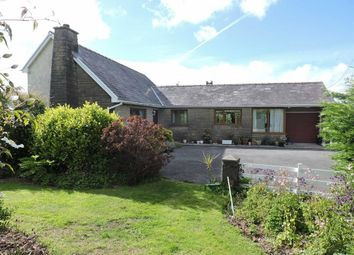 Thumbnail 4 bed detached bungalow for sale in Rhos, Llandysul