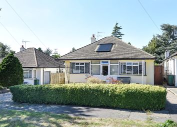 Thumbnail Detached bungalow for sale in Claremount Gardens, Epsom