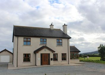 Thumbnail 4 bedroom detached house for sale in Oakfort, Cloughoge, Newry
