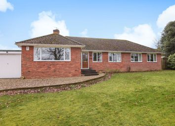 Thumbnail 4 bed detached bungalow for sale in Knights Lane, Ball Hill, Newbury