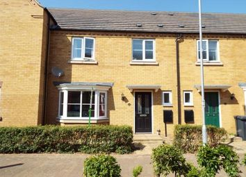 Thumbnail Property for sale in Ashmead Road, Bedford, Bedfordshire, .