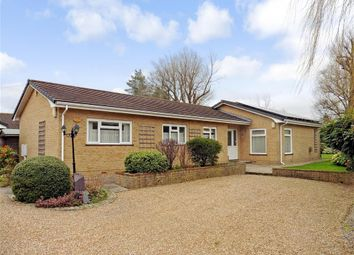 Thumbnail 4 bed detached bungalow for sale in Horley Road, Charlwood, Surrey