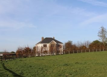 Thumbnail 4 bed detached house for sale in Munny, Gorey, Wexford